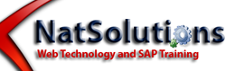 NAT Solutions